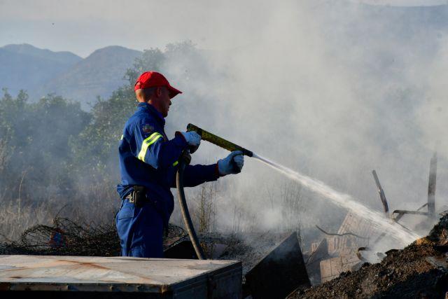 Θεσσαλονίκη: Υπό έλεγχο πυρκαγιά σε δασική έκταση | tanea.gr