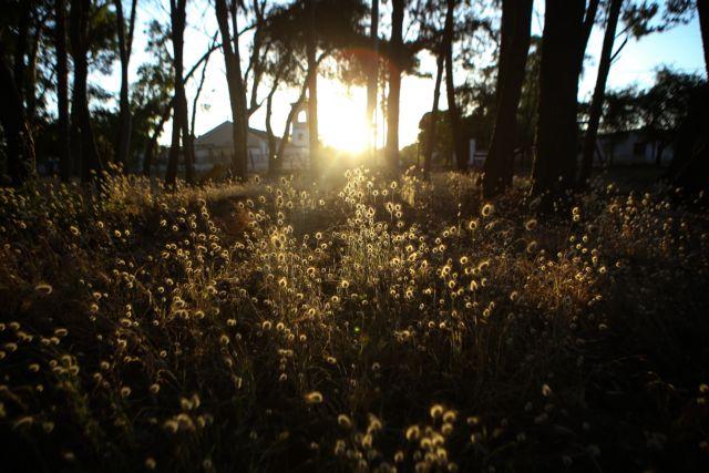 Καιρός: Και από το Σάββατο... καλοκαίρι | tanea.gr