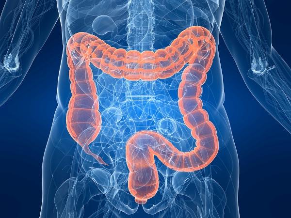 Καρκίνος εντέρου: Ποια τροφή σκοτώνει το 75% των όγκων | tanea.gr