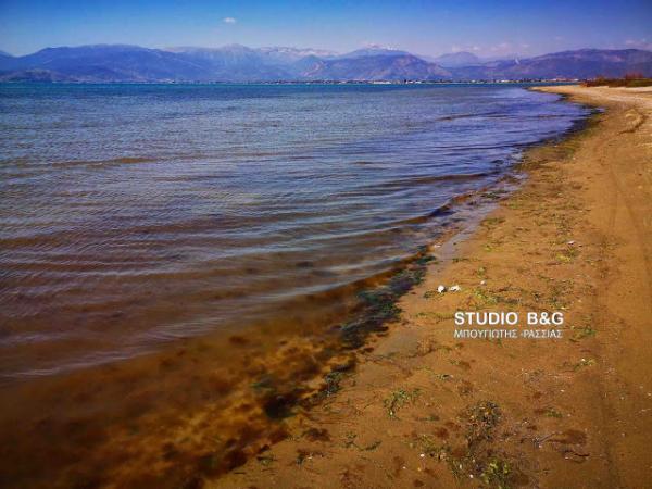 Κοκκίνησε η θάλασσα στο Ναύπλιο | tanea.gr