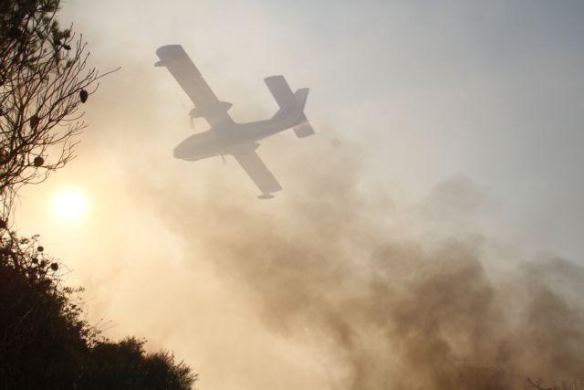 Ασυντήρητα καναντέρ καθηλωμένα στην Ελευσίνα  - Οι φλόγες καταπίνουν το σπάνιο δάσος της Στροφυλιάς | tanea.gr
