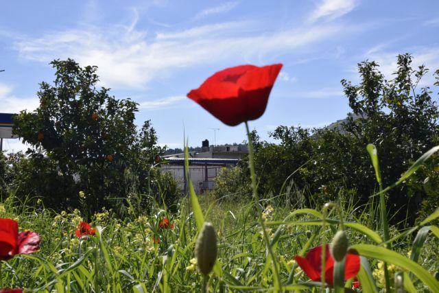 Στις 18 Απριλίου ξεκινά το πασχαλινό ωράριο των καταστημάτων | tanea.gr