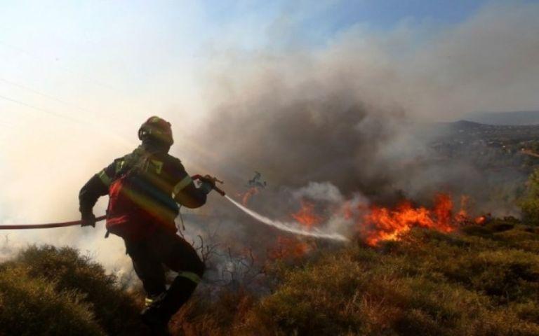 Το μπάρμπεκιου κατέληξε σε… δασική πυρκαγιά και πρόστιμο 27 εκατ. ευρώ | tanea.gr