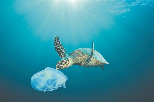 Πλαστικά τέλος το 2021 | tanea.gr
