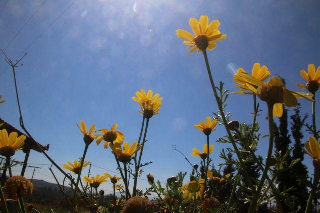 Καιρός: Σε άνοδο η θερμοκρασία το Σάββατο | tanea.gr