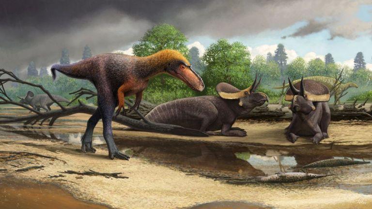 Ανακαλύφθηκε μικρομεσαίος πρόγονος του Τυραννόσαυρου | tanea.gr