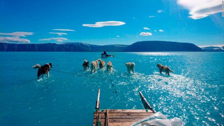 Γροιλανδία: Η τραγική κατάσταση μέσα από μια εικόνα | tanea.gr
