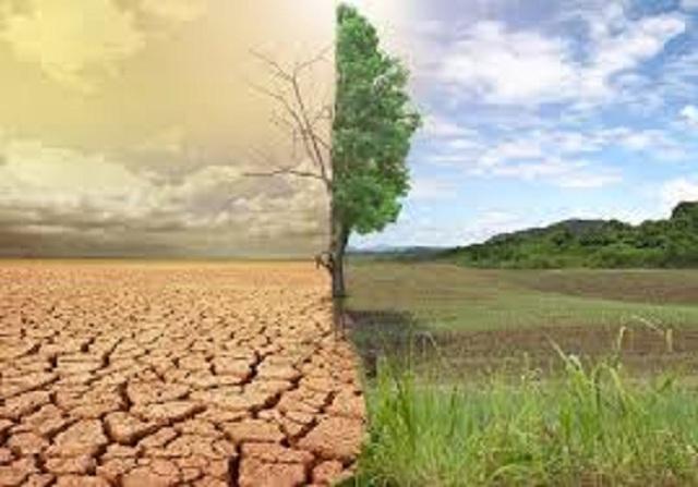 Καμπανάκι επιστημόνων: Η κλιματική αλλαγή απειλεί σοβαρά την ανθρώπινη υγεία | tanea.gr