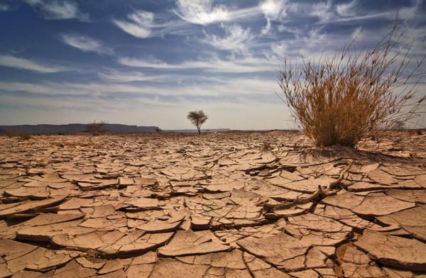 ΟΗΕ: Στο «κλιματικό απαρτχάιντ», οι πλούσιοι θα σωθούν και οι φτωχοί θα υποφέρουν | tanea.gr