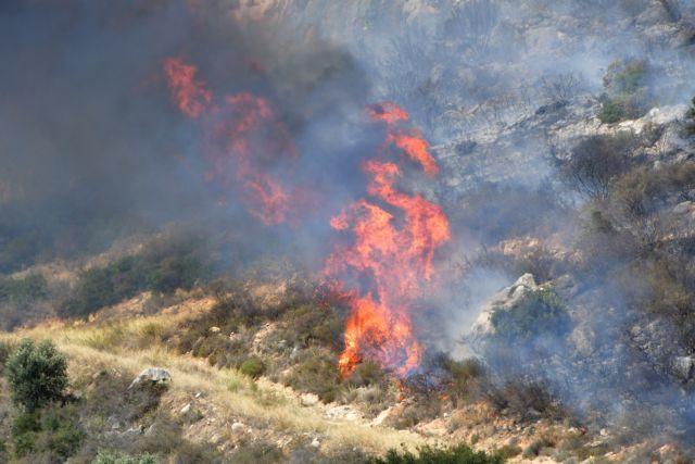 Φωτιά ξέσπασε στο Καλαμίτσι Χαλκιδικής | tanea.gr
