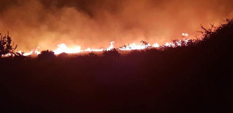 Εκκενώθηκαν κατοικίες στην Κάρυστο – Νύχτα αγωνίας (φωτό) | tanea.gr