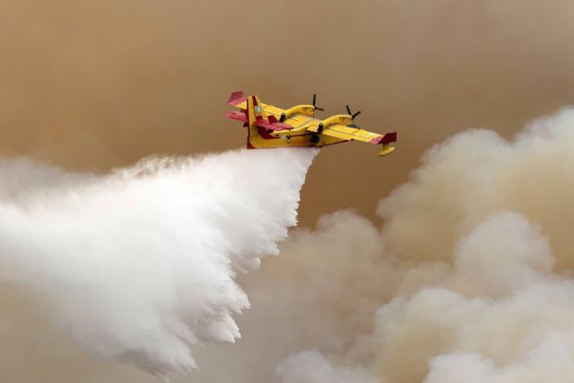 Φωτιά καίει δάσος σε δυσπρόσιτη περιοχή στην Ξάνθη | tanea.gr