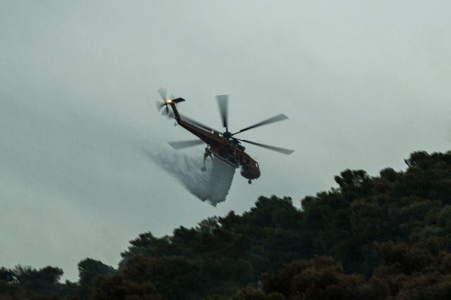 Φωτιά καίει δασική έκταση στην ανατολική Μάνη | tanea.gr