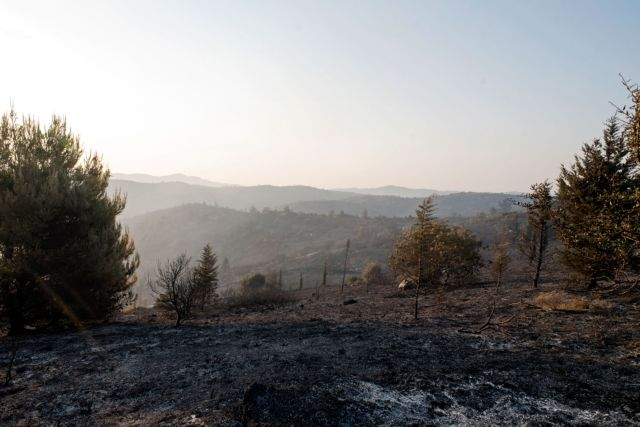 Σε κατάσταση έκτακτης ανάγκης τρεις περιοχές της Εύβοιας | tanea.gr