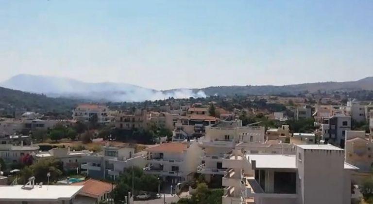 Μεγάλες φωτιές σε Ραφήνα και Βαρνάβα Αττικής   tanea.gr