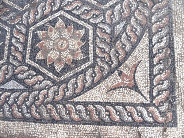 Αρχαιολόγοι ανακάλυψαν στην Αλεξάνδρεια ψηφιδωτό μωσαϊκό του 4ου-7ου αι. μ.Χ. | tanea.gr