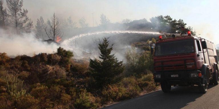 Φωτιά στον Κατσικά Ιωαννίνων, κοντά σε καταυλισμό προσφύγων   tanea.gr