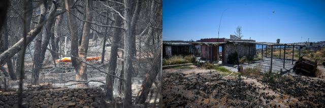 Τραγωδία στο Μάτι: 20 καρέ «πριν» και «μετά» - Τα καμένα, οι παραλίες και το μοιραίο οικόπεδο   tanea.gr