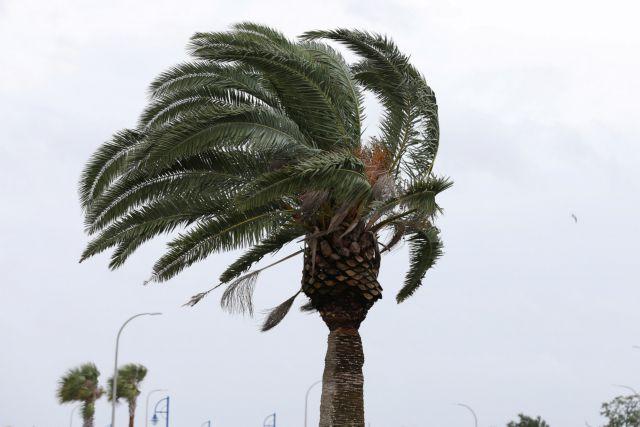 Κλιματική αλλαγή: Ακραία καιρικά φαινόμενα σε όλο τον κόσμο | tanea.gr