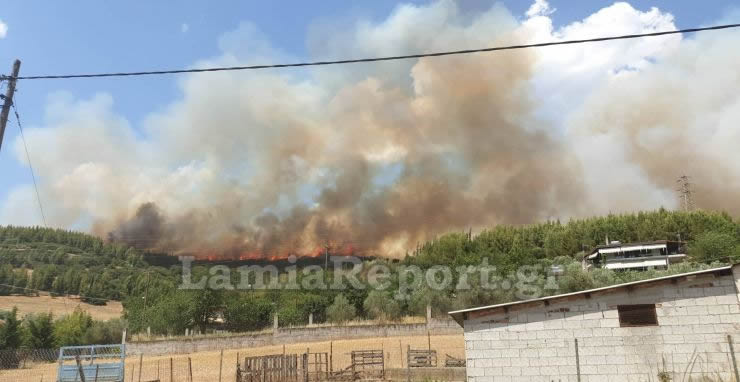 Φωτιά καίει δασική έκταση κοντά σε οικισμούς στη Μακρακώμη Φθιώτιδας | tanea.gr