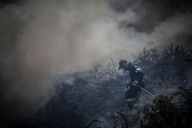 Συνελήφθη η 72χρονη για την πυρκαγιά στα Σπάτα | tanea.gr