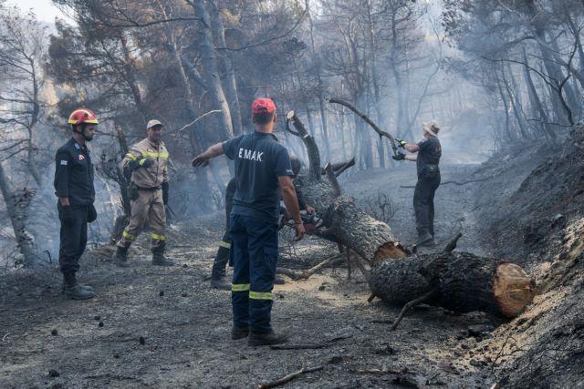 Αποστόλου από Εύβοια: «Κλειδί» για την αποτροπή πυρκαγιών η πρόληψη   tanea.gr