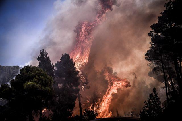 Στις φλόγες η Εύβοια: Ισχυροί άνεμοι δυσχεραίνουν το έργο της Πυροσβεστικής   tanea.gr