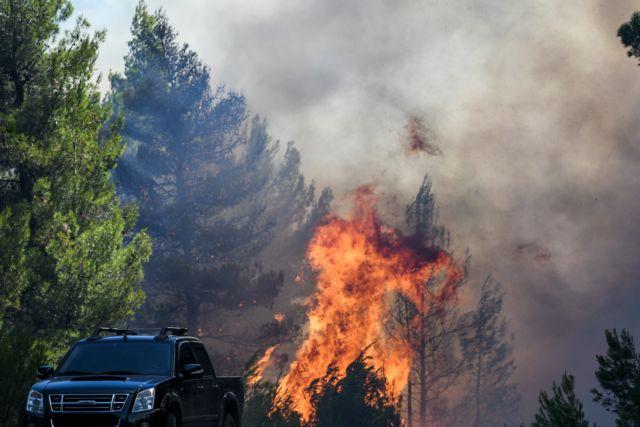 Τα διεθνή ΜΜΕ για την πυρκαγιά στην Εύβοια | tanea.gr