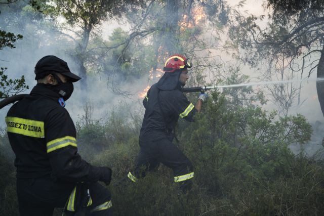 Φωτιά στην Εύβοια: 2.500 μπουκάλια νερού και χυμούς στους πυροσβέστες από τον Δήμο Αθηναίων | tanea.gr