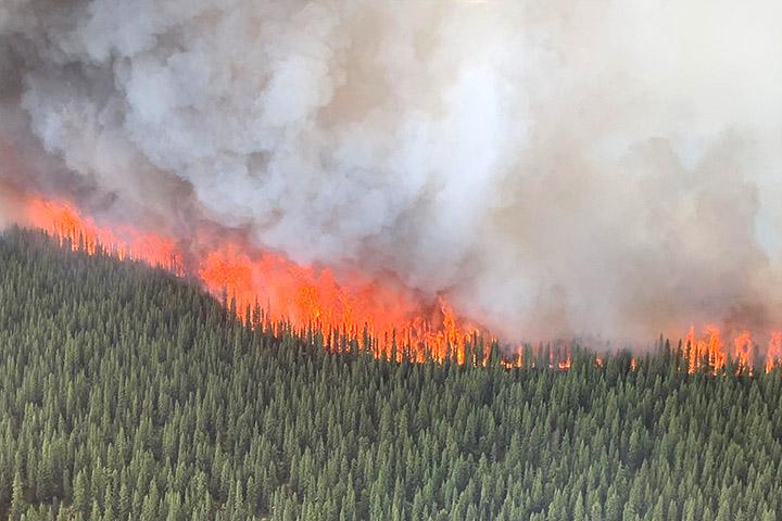 NASA για Γη: «Κάτι πάντα καίγεται κάπου» | tanea.gr