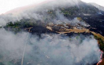 Φωτιά σε δύσβατο σημείο στο Πετρωτό Δομοκού | tanea.gr
