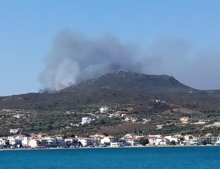 Μεγάλη φωτιά στην Ελαφόνησο – Εκκενώνεται κάμπινγκ | tanea.gr