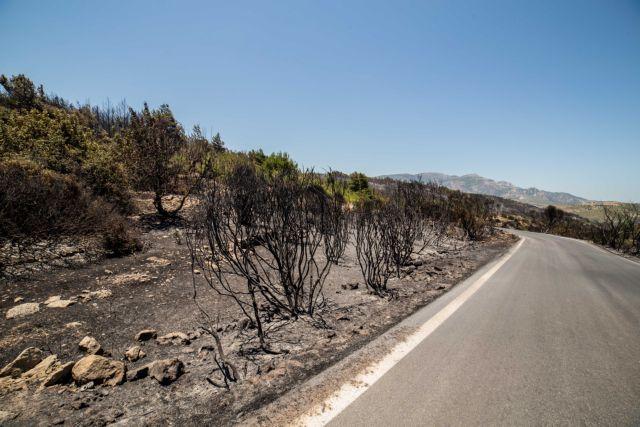Οι πυρκαγιές σε Σάμο και Κύθηρα είναι σε ύφεση | tanea.gr