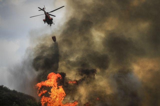 Μεγάλη φωτιά στο Μαραθώνα - Μεγάλη κινητοποίηση | tanea.gr