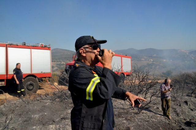 Η Πυροσβεστική συνέλαβε τον εμπρηστή της Ηλείας | tanea.gr