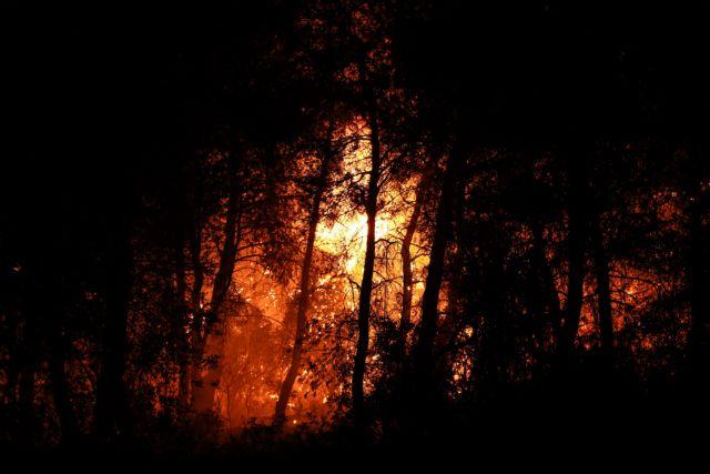 Καρέ – καρέ η ολονύχτια «μάχη» με την φωτιά στην Εύβοια | tanea.gr