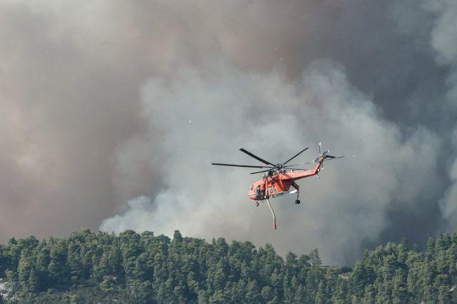 Φωτιά στη Βιάννο Ηρακλείου – Ισχυροί άνεμοι στην περιοχή | tanea.gr