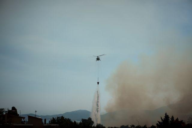 Ορατή από το Διάστημα η πυρκαγιά στην Εύβοια | tanea.gr