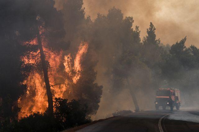Η ΕΕ κινητοποιεί τα επιχειρησιακά της μέσα για την πυρκαγιά στην Εύβοια   tanea.gr