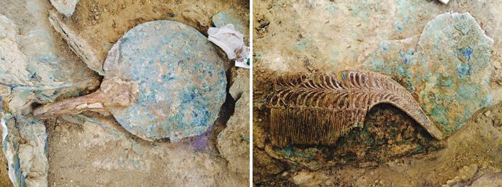 Πύλος: Μοναδικά ευρήματα στον τάφο του Γρύπα Πολεμιστή | tanea.gr