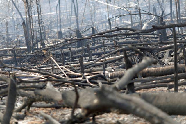 Ο Μακρόν μπαίνει μπροστά στην προσπάθεια σωτηρίας του Αμαζονίου | tanea.gr