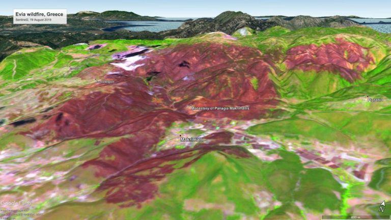 Εύβοια: Νέες φωτογραφίες από το Copernicus με την καμένη περιοχή | tanea.gr