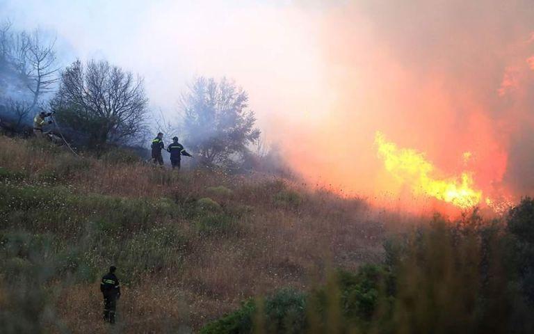 Φωτιά στις Ερυθρές Μάνδρας – Μεγάλη κινητοποίηση της πυροσβεστικής | tanea.gr