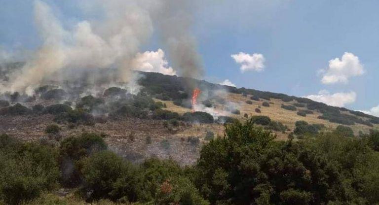 Υπό μερικό έλεγχο η πυρκαγιά στα Πικουλιάνικα Σπάρτης   tanea.gr