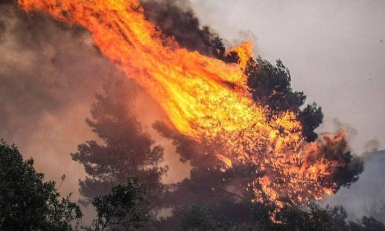 Φωτιά στη Σάμο : Μαίνεται ανεξέλεγκτο το μέτωπο στο Μεσόκαμπο - Εκκενώθηκαν ξενοδοχεία | tanea.gr