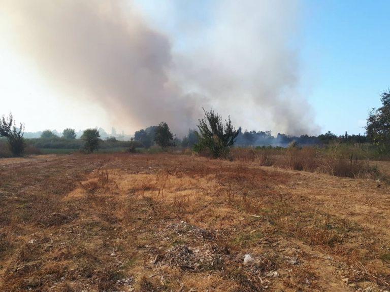 Υπό έλεγχο η φωτιά στην Κέρκυρα | tanea.gr