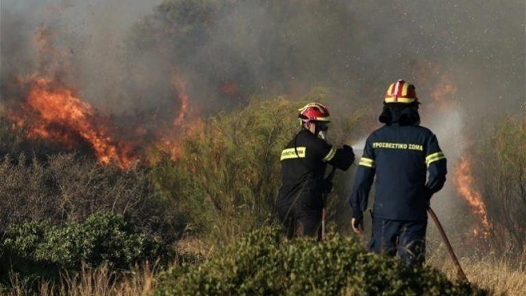 Κρήτη: Συναγερμός στην Πυροσβεστική για πυρκαγιές σε Ιεράπετρα και Ρέθυμνο | tanea.gr