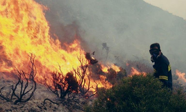 Σε πύρινο κλοιό η χώρα: Μάχη της Πυροσβεστικής σε πολλαπλά μέτωπα | tanea.gr