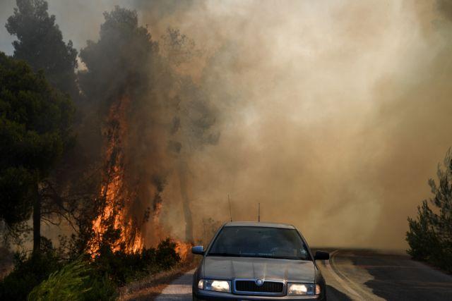 Ο δήμαρχος Καλαβρύτων για την πυρκαγιά στον Κάτω Δρυμό | tanea.gr