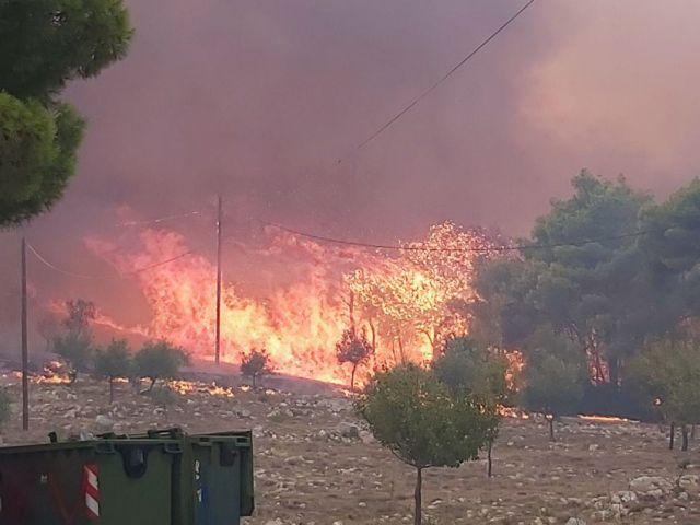 Δήμαρχος Ζακύνθου στο One Channel: Ανεξέλεγκτη η φωτιά – Καταστροφική καθυστέρηση εναέριων μέσων | tanea.gr